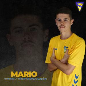 3. MARIO